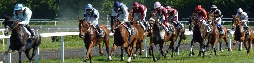 A day at the races. Horse Racing in full action