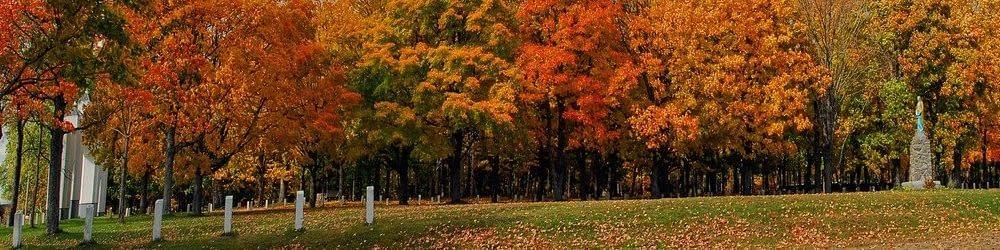 Autumn Fall New Brunswick