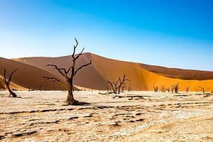 Extreme Drought Risk to Double Due to Climate Change